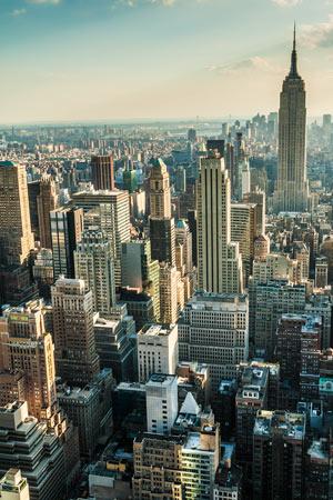 Pest Control Manhattan Brooklyn